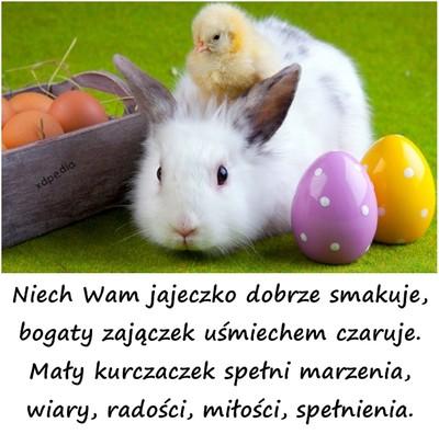 niech_wam_jajeczko_dobrze_smakuje_2014-04-18_01-49-27
